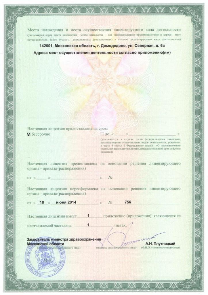 Лицензия ДЦДИ (2)s.jpg